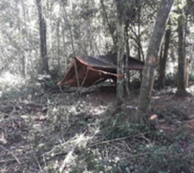 Itaipú denuncia invasión de reserva y tala ilegal de árboles