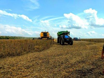En el Alto Paraná, productores estiman cosecha récord de soja