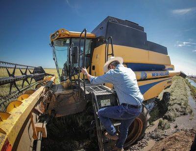 Mario Abdo vaticina un buen año para el sector agrícola