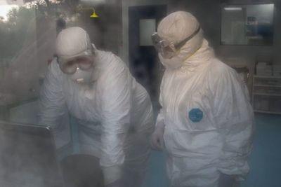 Salud: Circulación de resultado positivo a coronavirus, es falsa alarma