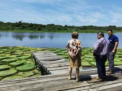 Instan a la valorización y protección de la planta acuática en peligro de extinción