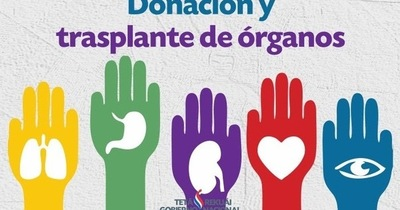 Siete barreras para la donación  de órganos