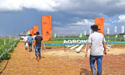 » AGRONOMY DAY: Tecnologías y manejo propuestos por Corteva