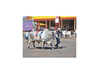 Suspenden Expo Canindeyú y en Alto Paraguay, las clases