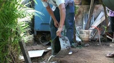 A no bajar guardia ante el dengue: instan a eliminar criaderos durante los días en casa