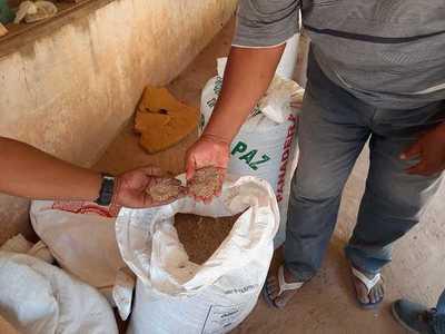 MAG brinda asistencia técnica a productores de varios distritos del país incluyendo al Chaco