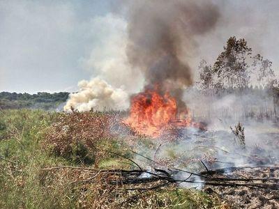 Siguen los incendios de pastizales en SJN