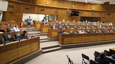 Coronavius: Senado debate la Ley de Emergencia Económica