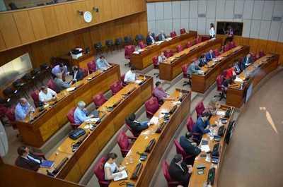 Senador pide a diputados reconsideren aporte estatal a las familias que es insuficiente