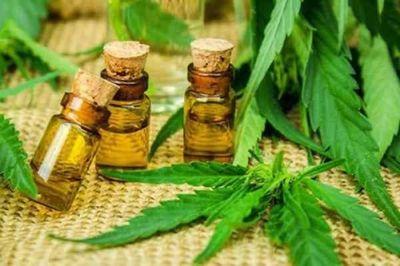 Silva Facetti propone liberar licencias para producir cannabis medicinal