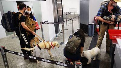 Países repatrian a sus ciudadanos varados en Paraguay