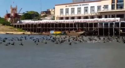El río Paraguay y la bahía recuperan su brillo