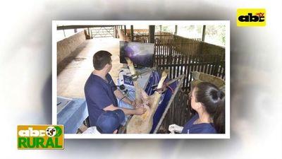 ABC Rural Programa 19: Tecnología