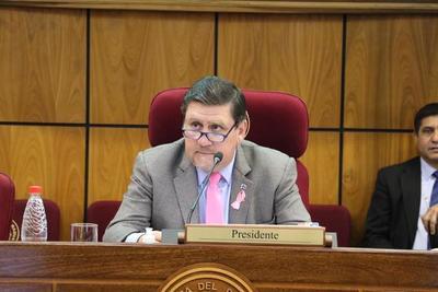 Senadores tratarán el miércoles la prórroga de elecciones municipales y del mandato de intendentes y concejales
