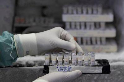 La ciencia trabaja ya en 20 vacunas y en 30 medicamentos potenciales