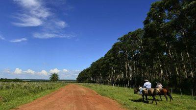 Pensar en un Paraguay más rural