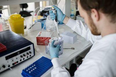 La vacuna contra el coronavirus tardará al menos un año