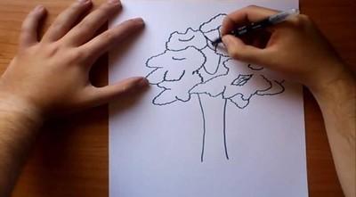 #PlantadosEnCasa, la novedosa campaña para los días de aislamiento