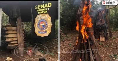 SENAD destruye más de 400 kilos de marihuana en Tomas Romero Pereira
