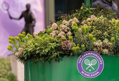 Wimbledon es cancelado a causa de la pandemia del Covid-19