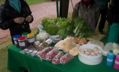 HOY / Productoras paraguayas ofrecen envío de alimentos ante la pandemia