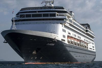 Pasajeros de cruceros con coronavirus viajan a casa y otro barco con enfermos busca puerto
