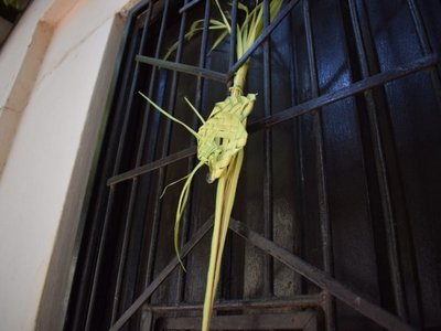 Villarrica y Concepción celebran bendición de palmas desde el hogar