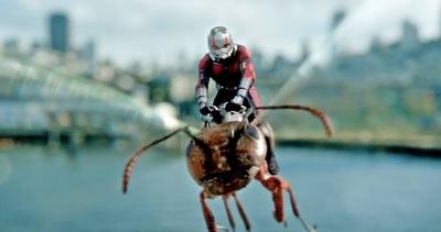 """HOY / Marvel ficha al guionista de """"Rick and Morty"""" para nueva cinta de """"Ant-Man"""""""