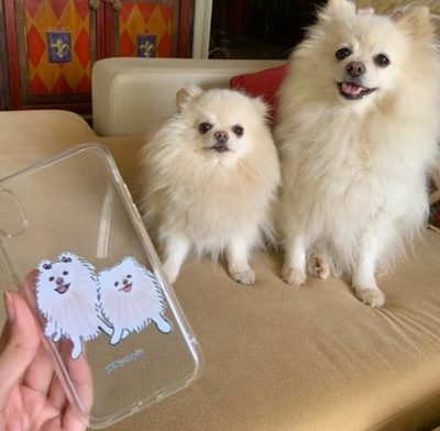 Lanzan innovadora línea de protectores con mascotas como protagonistas