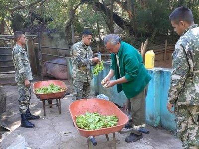 Covid-19: Militares dan una mano a trabajadores del Zoológico de Asunción
