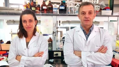 Coronavirus: Investigadores argentinos desarrollaron un programa que detecta casos positivos en 3 minutos