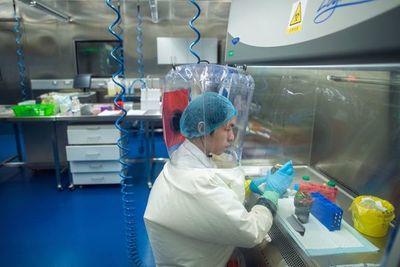 El laboratorio de Wuhan, centro de una controversia mundial