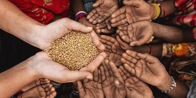 Naciones Unidas advierte que se deben implementar de inmediato medidas para evitar pandemia alimentaria