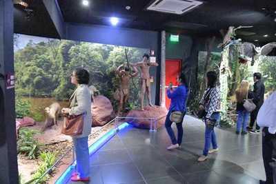 Museo de ITAIPU mostró su valioso acervo al público en la «Noche de los Museos»