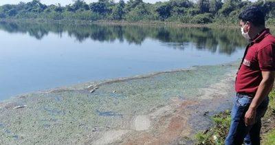 Verifican mortandad de peces en Laguna Cerro de Limpio