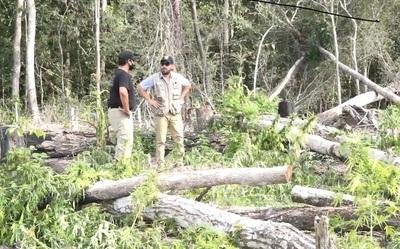 Ministro del ambiente promete más control en Parque Nacional