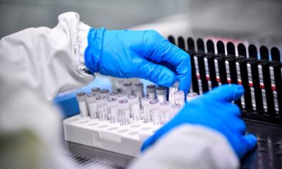 Efectividad de vacuna contra covid-19 desarrollada por la Universidad de Oxford se conocerá en invierno