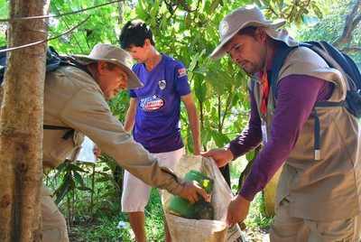 Campaña Pará-na ya rastrilló más de 8 mil predios del Alto Paraná