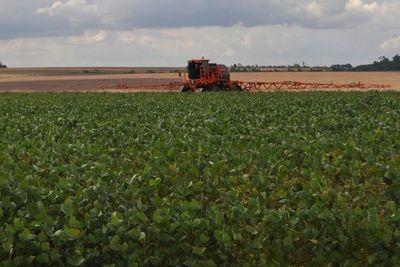 Senado rechazó la creación del impuesto a la soja