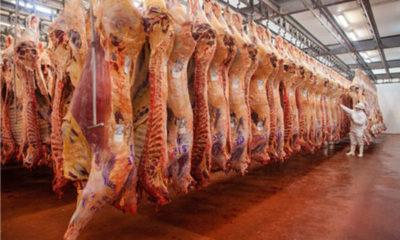 » Descenso de precios de la carne vacuna repercutió en la deflación en Paraguay