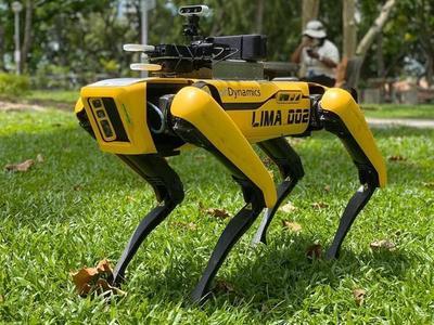Singapur: Sofisticados robots monitorean el distanciamiento social