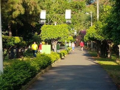 Municipalidad atenderá el sábado y ciclovía desde el lunes