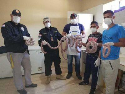 Reclusos de la cárcel de Misiones producen 500 kilos de chorizo misionero