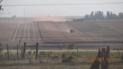 Sojeros aprovechan la cuarentena para continuar deforestando, denuncian