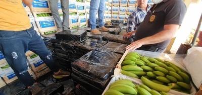 "HOY / Marihuana ""disfrazada"" de bananas con destino a la Argentina cae gracias a canes"
