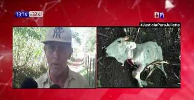 San Pedro: Pobladores aseguran que tigre suelto ataca a ganados