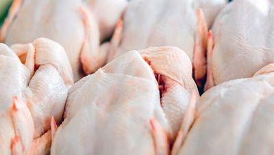 Preocupa al sector avícola ingreso de pollos provenientes de Brasil en plena pandemia