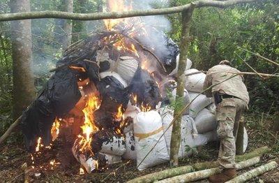 Eliminan más de ocho toneladas de marihuana en Alto Paraná