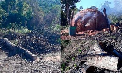 Más de 100 hectáreas fueron deforestadas en comunidad indígena de San Joaquín – Prensa 5
