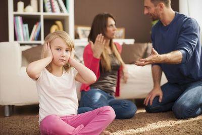 ¿Cuándo una familia es funcional o no?